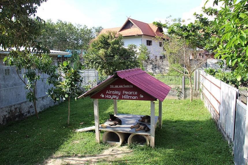 Приют для животных в Ланте