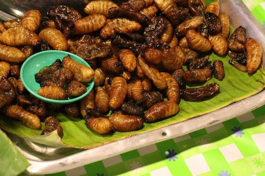 Жареные насекомые
