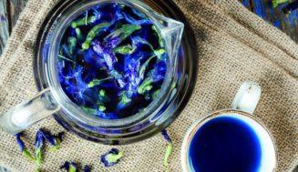 Синий чай в Таиланде