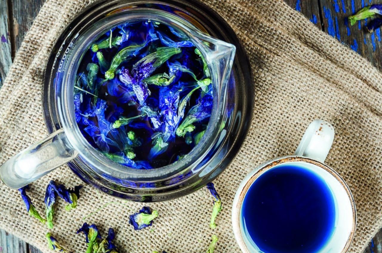 Фото синего чая
