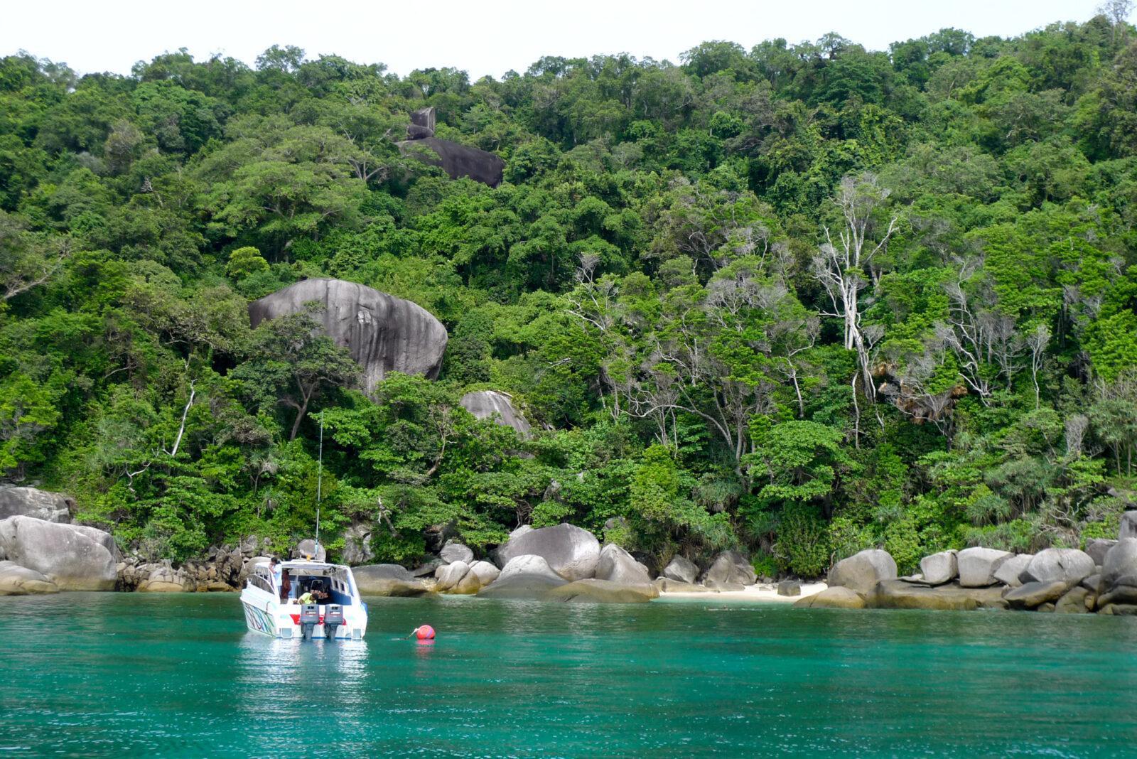 Фауна на Симиланских островах