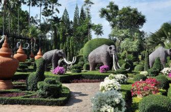 Фото парка Нонг Нуч в Паттайе