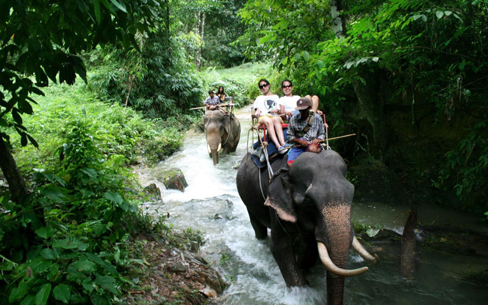 Фото прогулки на слонах на озере Чео Лан