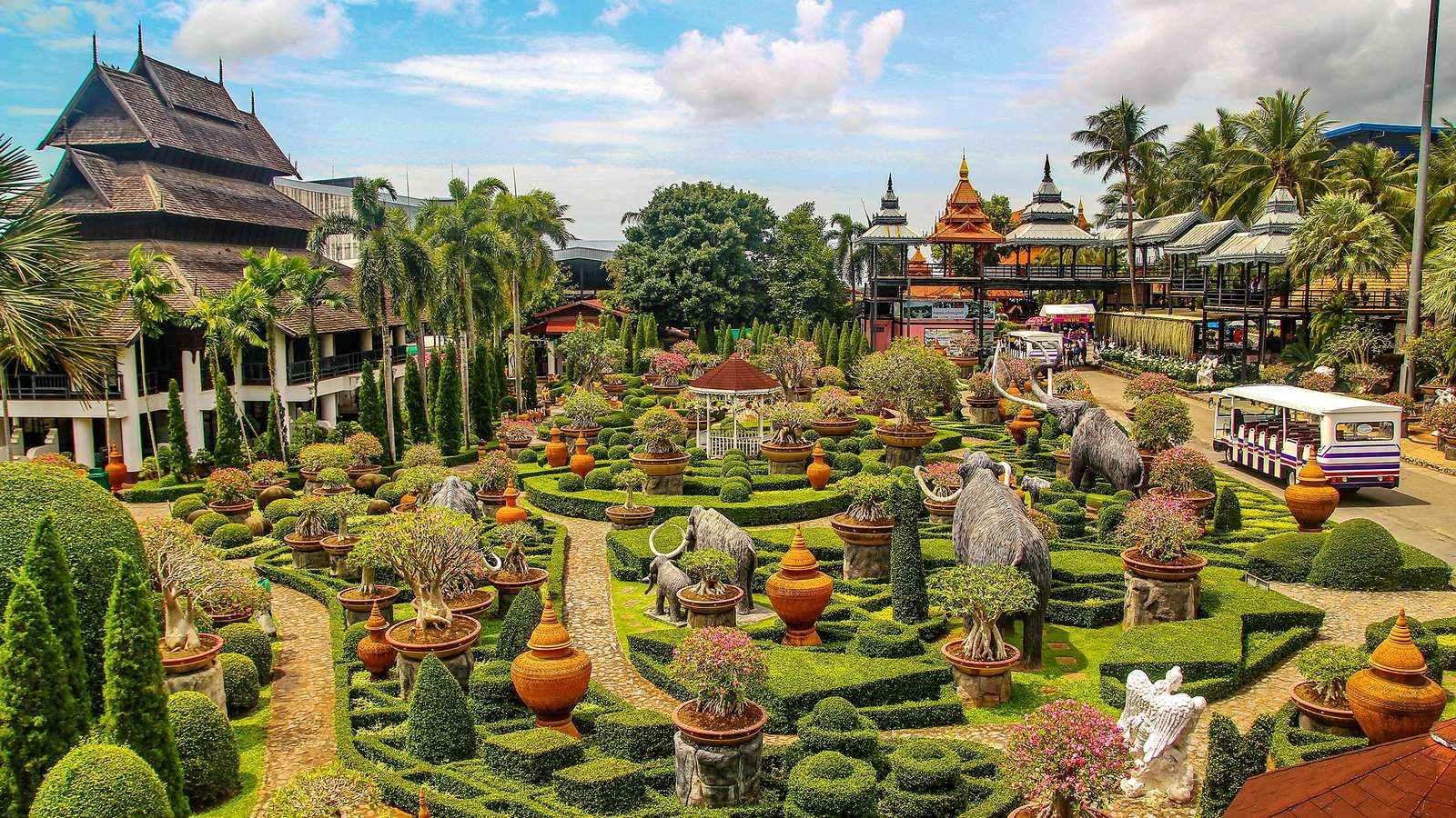 Фото тропического сада